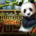 bamboo-rush-qqsutera